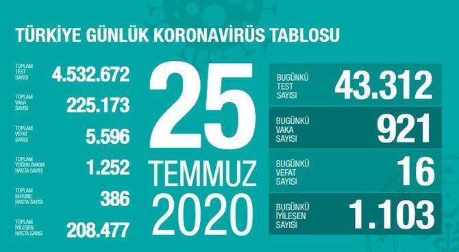 Türkiye'de iyileşenlerin sayısı 208 bin 477'ye yükseldi